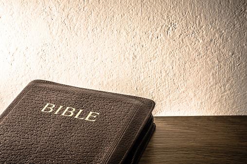 聖書はすべて神の霊の導きの下に書かれ、人を教え、戒め、誤りを正し ...